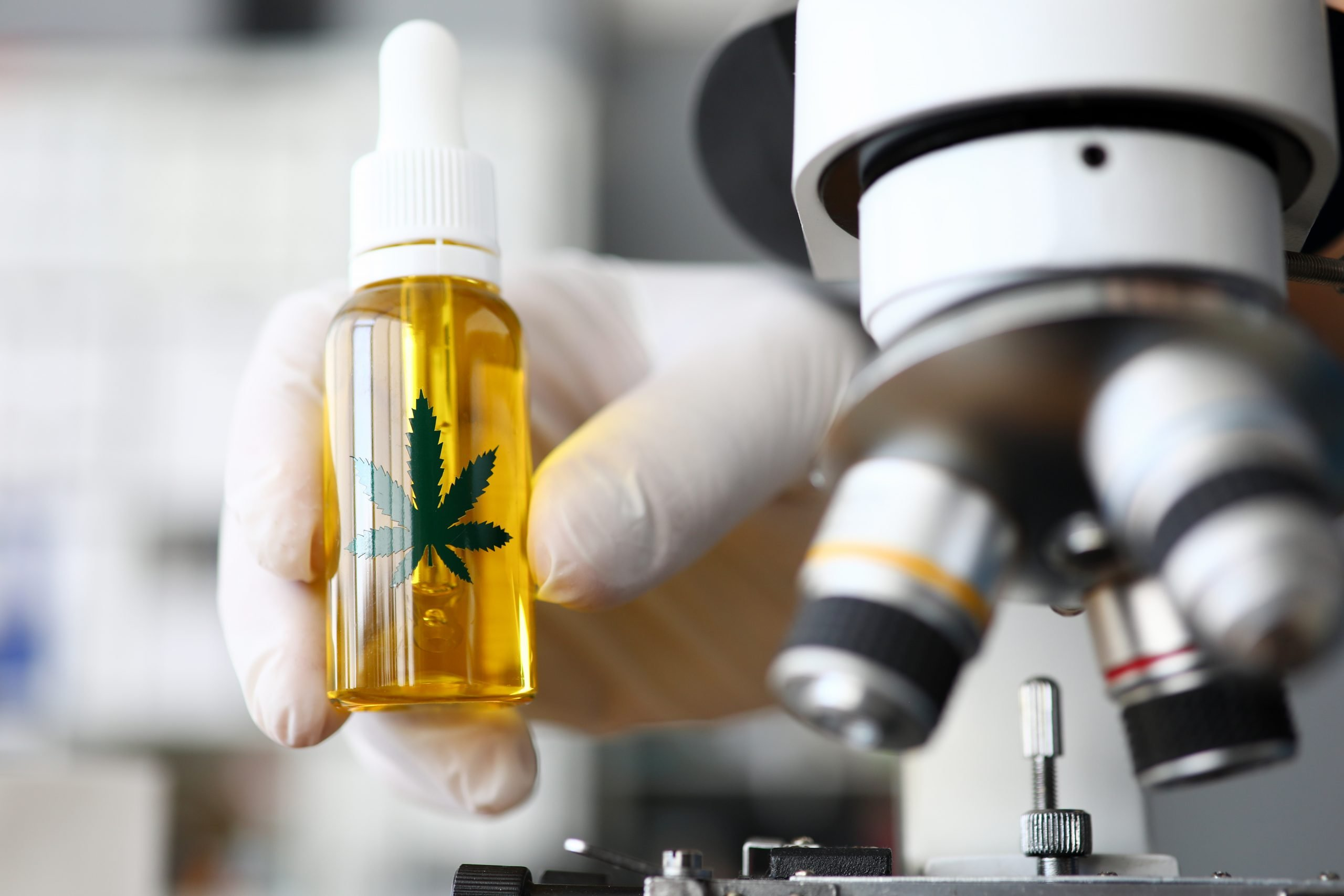 Cannabinoid oil in laboratory