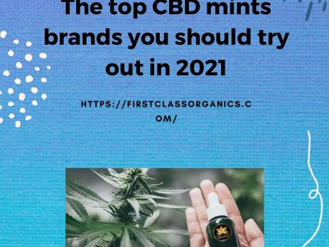 The top CBD mints brands you should try out in 2021